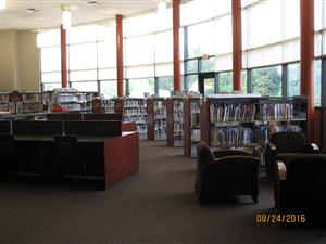 Welcome to the Shallow Brook Library!